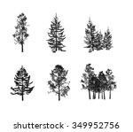 fir tree | Shutterstock . vector #349952756