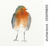 Watercolour Showing A Fluffy...