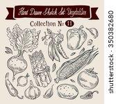 vegetables sketch. set of... | Shutterstock .eps vector #350382680