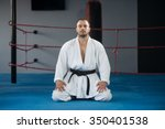 young man practicing his karate ... | Shutterstock . vector #350401538
