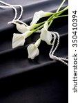calla | Shutterstock . vector #350410394