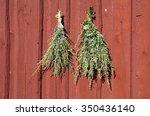 Bundles Of Fresh Herbs Hanged...