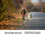 Stock photo little boy walking with a golden retriever in autumn park 350501060
