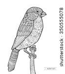 bullfinch bird  vintage floral... | Shutterstock .eps vector #350555078