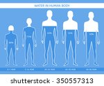 water in human body. the man at ... | Shutterstock .eps vector #350557313