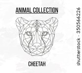 cheetah head geometric lines... | Shutterstock .eps vector #350566226