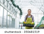 Female Florist Working In Her...