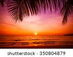 sunset and beach.  beautiful... | Shutterstock . vector #350804879