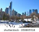 Central Park In The Winter  Ne...