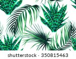 tropical palm leaves  jungle... | Shutterstock .eps vector #350815463