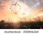 corporate social responsibility ... | Shutterstock . vector #350846264