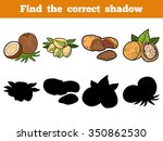 find the correct shadow  nuts | Shutterstock .eps vector #350862530