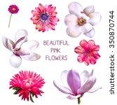 illustration of beautiful... | Shutterstock . vector #350870744