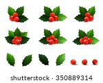 holly berry leaves christmas... | Shutterstock .eps vector #350889314