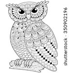 Decorative Owl. Adult...