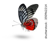 beautiful red butterfly lower... | Shutterstock . vector #350962214