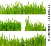 sample of green grass borders... | Shutterstock . vector #351155186