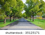 tree lined country lane | Shutterstock . vector #35125171