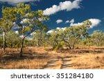 agate creek fossicking area ... | Shutterstock . vector #351284180