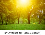 beautiful landscape with sunset ... | Shutterstock . vector #351335504