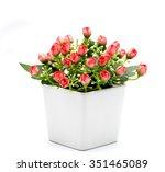 trees  flowers in pots on white ... | Shutterstock . vector #351465089