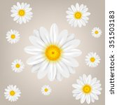 chamomile. background with... | Shutterstock .eps vector #351503183