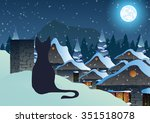 Cat On A Snowy Roof On Night...