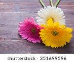 Three Gerbera Flowers Of...
