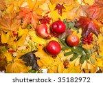 autumn background | Shutterstock . vector #35182972