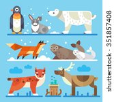 Nice North And Arctic Animals...