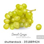 bunch of grapes  vector icon | Shutterstock .eps vector #351889424