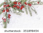 branches of  christmas tree... | Shutterstock . vector #351898454
