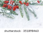 branches of  christmas tree... | Shutterstock . vector #351898463