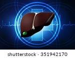 3d human liver and gallbladder | Shutterstock . vector #351942170
