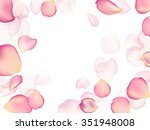Stock vector random rose petals against white background great for presentations forms and ad print 351948008