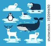 arctic and antarctic animals... | Shutterstock .eps vector #352044650