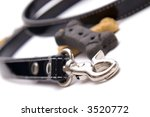 Stock photo treats and a leash ready for dog training class 3520772