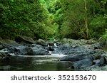 rainforest creek  near cairns ...   Shutterstock . vector #352153670