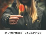 woman hand giving autumn red... | Shutterstock . vector #352334498