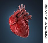 3d rendered human heart. | Shutterstock . vector #352429400