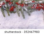 christmas tree branch with... | Shutterstock . vector #352467983