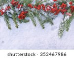 christmas tree branch with... | Shutterstock . vector #352467986
