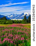 juneau  alaska. mendenhall... | Shutterstock . vector #352840943