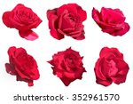 Stock photo six red rose isolated on white background group of flowers collection scrapbook element sticking 352961570