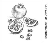 hand drawing pomegranate. cut... | Shutterstock .eps vector #352995344