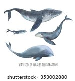 Watercolor Whale Set. Hand...
