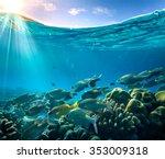 tropical ocean life. coral reef ... | Shutterstock . vector #353009318