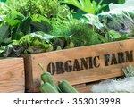 fresh organic produce from farm ...