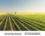tractor spraying soybean field... | Shutterstock . vector #353036804