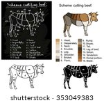 cutting scheme of beef on a... | Shutterstock .eps vector #353049383